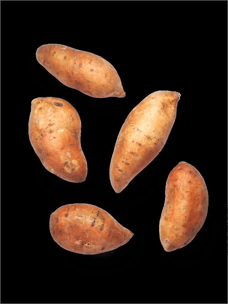 Süßkartoffel Schweden/Dänemark